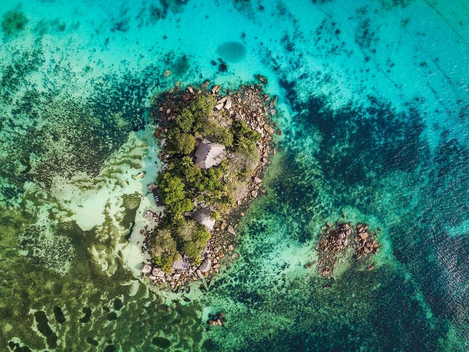 coral reef indian ocean